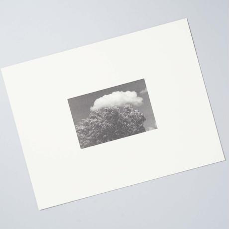 POLAROID 35mm 軌道回帰 / 植田正治(Shoji Ueda)