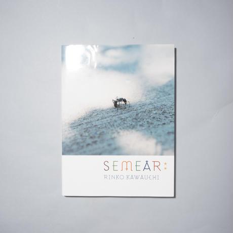 SEMEAR / 川内倫子(Rinko Kawauchi)