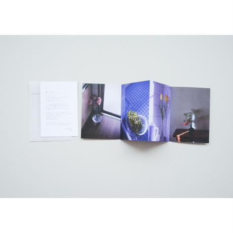 新『写真帳「花たちへ」(縦)』赤木遥