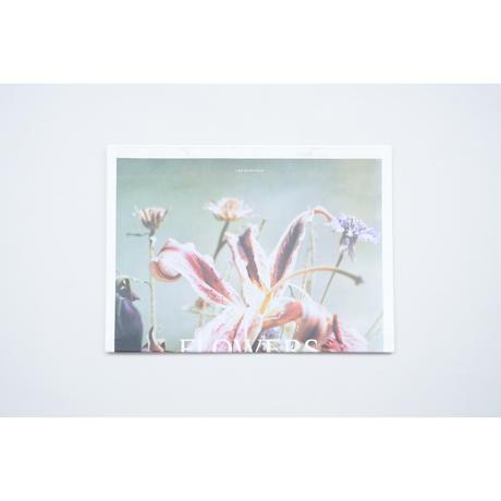新『FLOWERS』Lina Scheynius