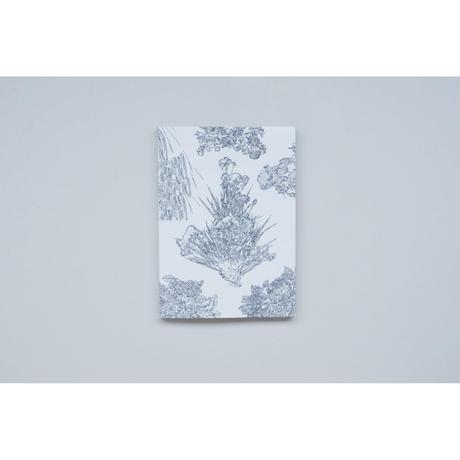 新『ARRANGING FLOWER ARRANGING』Andrea Salerno, Yeliz Secerli
