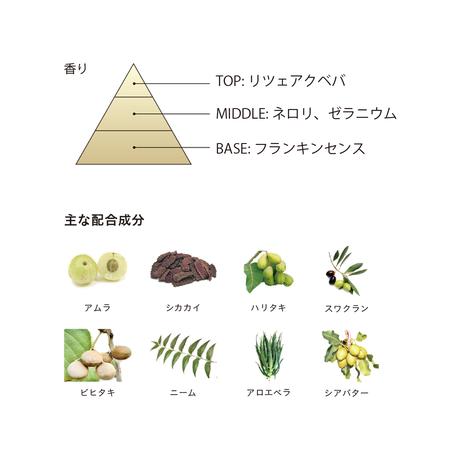 BOTANICOAT 自然派リタッチカラー【all the time】チャコールグレー 11g