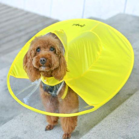 背中が傘のようなUFOレインコート サイズM イエロー