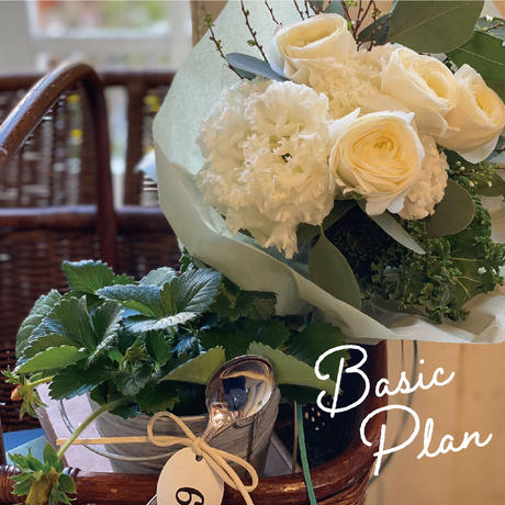 お花の毎月便 basic Plan