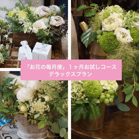 「お花の毎月便」1ヶ月お試しコース デラックスプラン