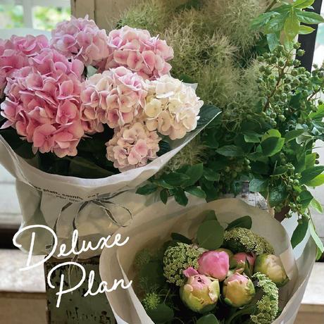 お花の毎月便 Deluxe Plan