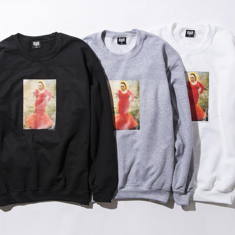 BxH Flamingo Crew-neck Sw