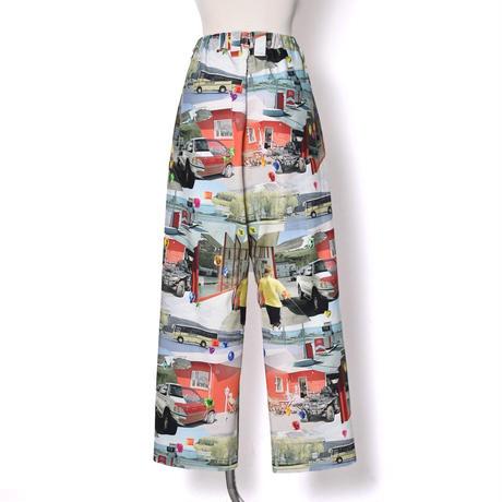 WATARU TOMINAGA / Single Pleat Trousers / Landscape & Stone
