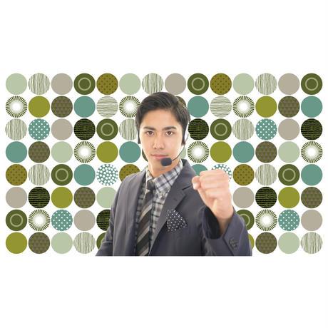 brav-02-00018 Background image pattern