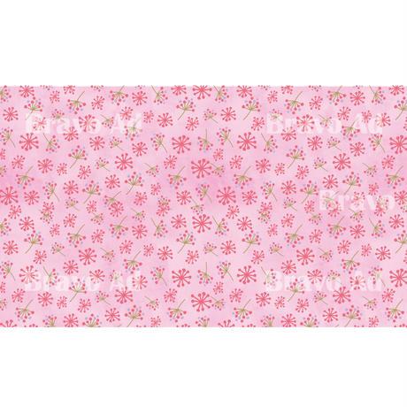 brav-02-00041 Background image pattern