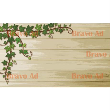 brav-02-00078 Background image
