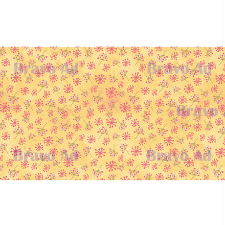 brav-02-00042 Background image pattern