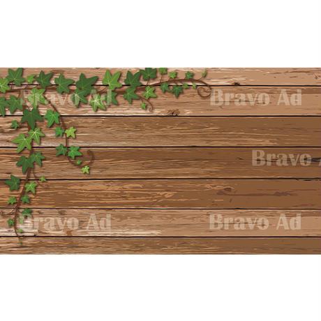brav-02-00077 Background image