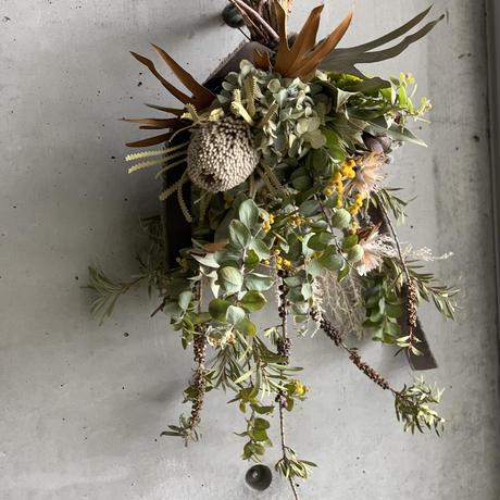 [Dry flower]大人なミモザスワッグ*カピバラさんみたいなバンクシャとブラウンブラックリボン仕立て