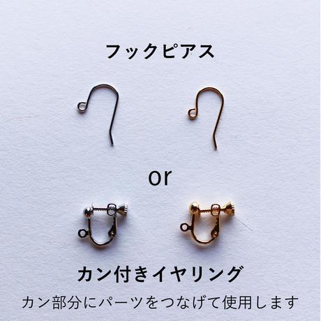 【選べるイヤリングorピアス】Brooklyn Charm アクセサリースターターキット(BCLS0134)