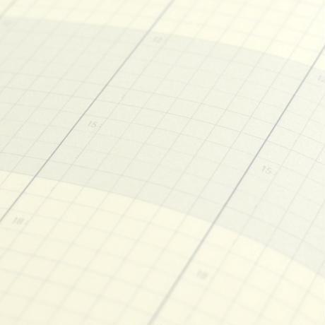 ブラウニー手帳2021 レギュラー(A6=文庫サイズ)ひよりミント