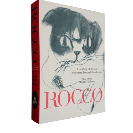 ROCCO, The story of the Cat who went beyond the Dream