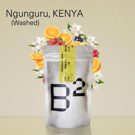 Ngunguru, KENYA  / ケニア ングングル (ColdBrewBags)