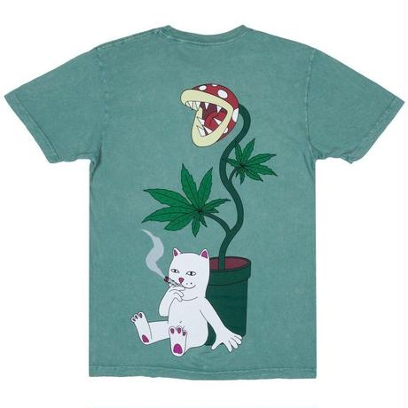 RIPNDIP HERB EATER TEE-GREEN WASH