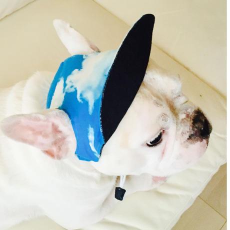 犬の帽子 C【リバーシブルタイプ】小型犬から中型犬用