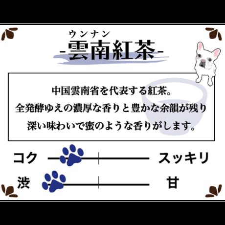 雲南紅茶 ティーバッグ 【贈答用】