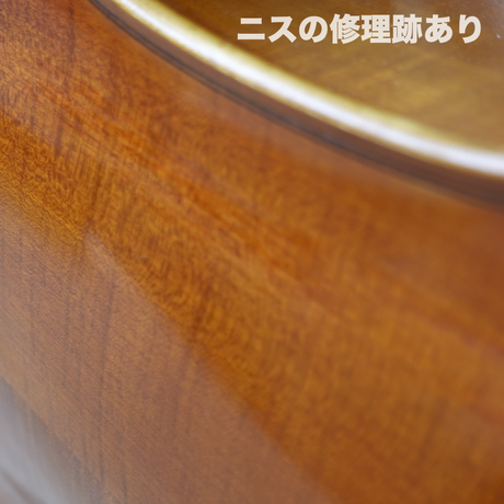 【チェロ】 アウトレット Pygmalius スタンダード 1/2サイズ 30%OFF