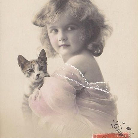 ピンクの服を着た女の子と猫