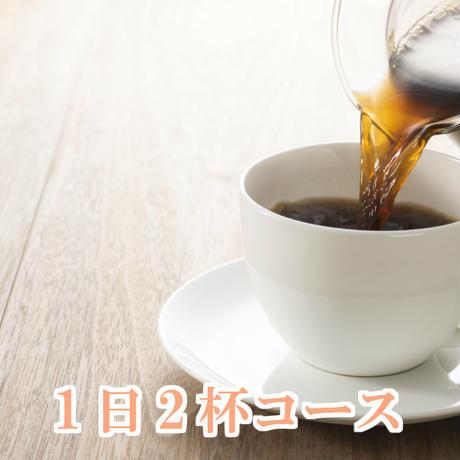 1日2杯プラン(600g)