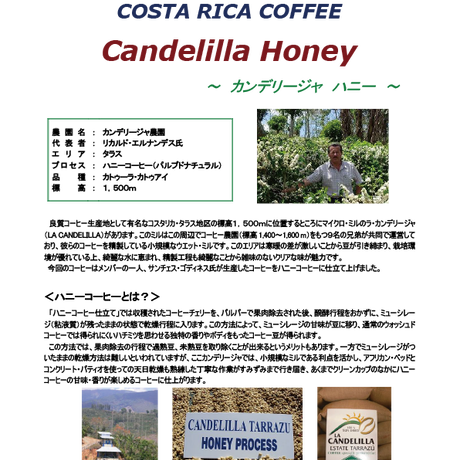 コスタリカ ーラ・カンデリージャ ハニー ー 200g