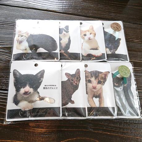 【送料無料】保護猫プロジェクト ~今月の里親募集の猫8個セット~