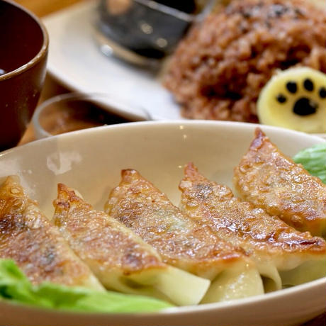 【数量限定】玄米菜食セット  玄米なし (レシピ付)Part1