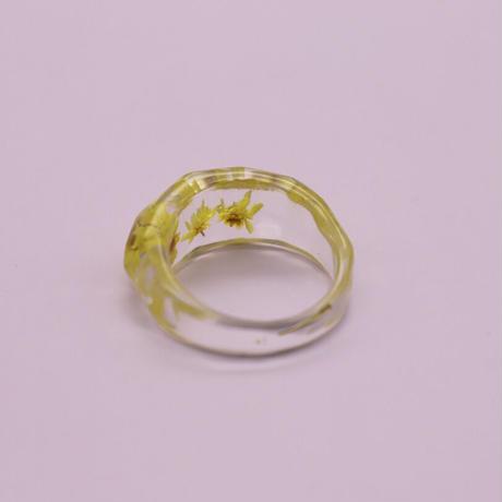 Clear dryflower ring  / 2105_RG048