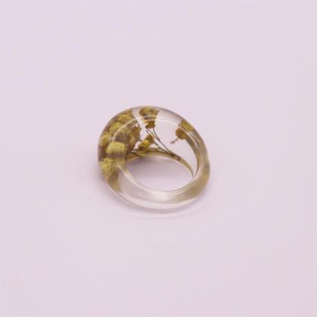 Clear dryflower ring  / 2105_RG050