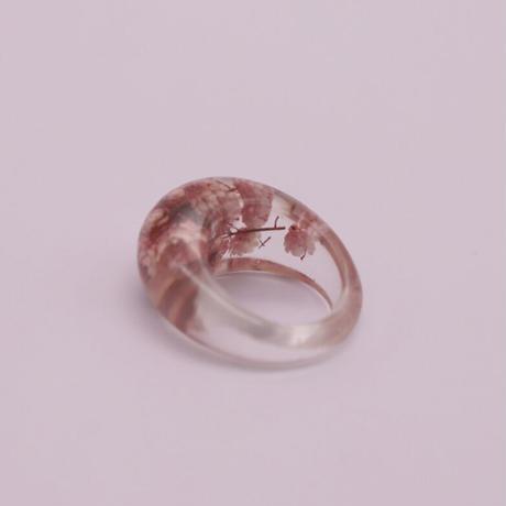 Clear dryflower ring  /  2105_RG049