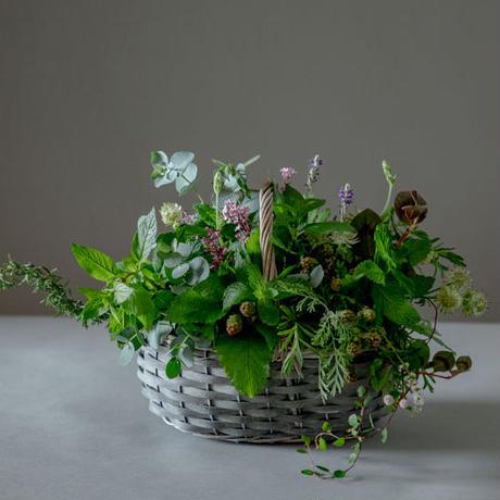 「Herb basket - grey」(天然ハーブバスケット - グレー)