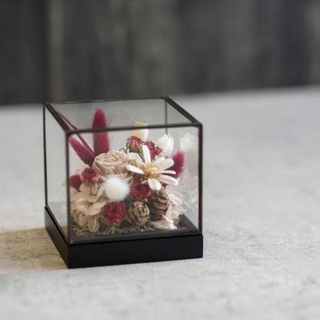【Flower Show Window】潔白な情熱