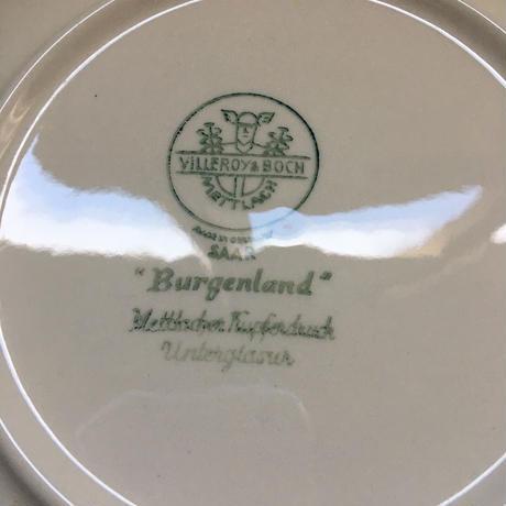 1950年代 ボッホ ブルゲンランド カップ&ソーサー デジュネ 1-2