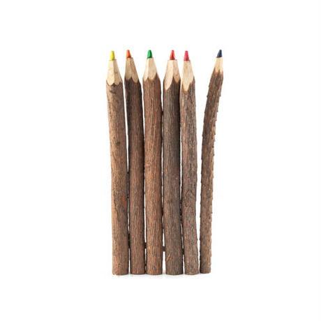 Twig Colored Pencils/トゥイグカラードペンシル