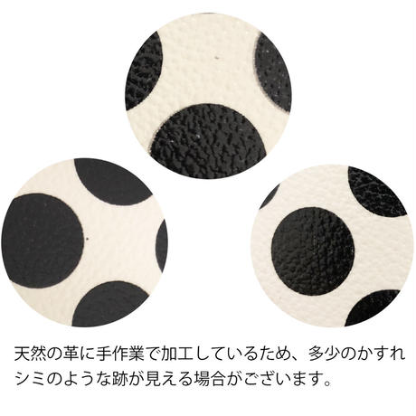 キーパスケース クリアドット  【Key Passcase Clear Dot】