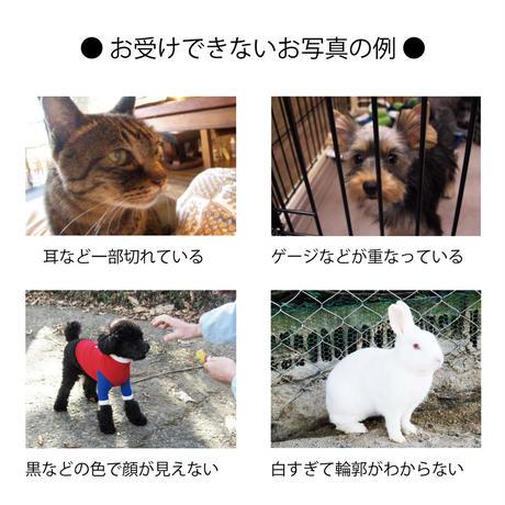 5/9(日)~16(日) 【オーダーメイド】トートバッグ&ポーチ    数量限定  [Domestic only]