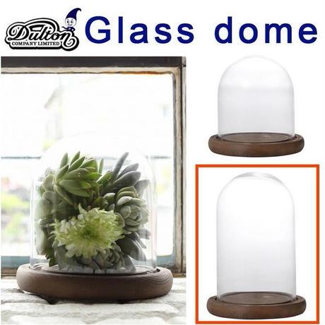 DULTON ダルトン GLASS DOME XSサイズ 発根管理 温室 コーデックス アガベ