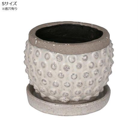 Terracotta bubble pot  Sサイズ 亀甲竜 アガベに