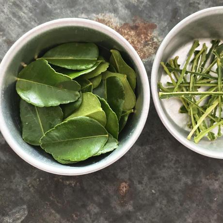 ガイヤーン・タイのバーベキューチキン (1食分)/アベクミコ