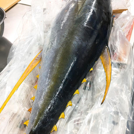 一本釣りキハダマグロのガーリックソテー・カシューナッツとトマトのバターカレーかけ(210g)/山フーズ