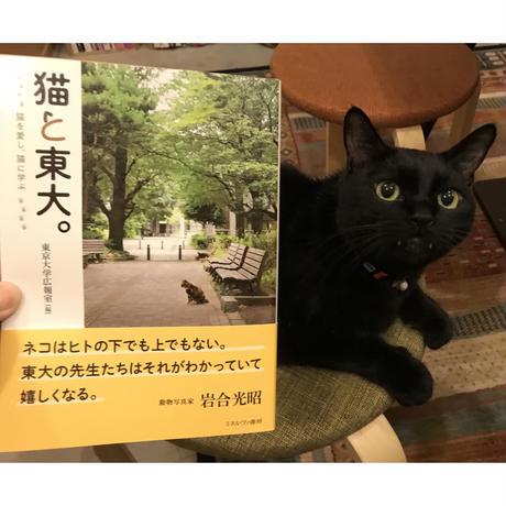 【オリジナルペーパー付】猫と東大。