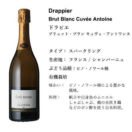 【Duoセレクション】日本でなかなか買えない、パリ ワインショップ LAVINIA セレクト(白&シャンパーニュ) Cセット