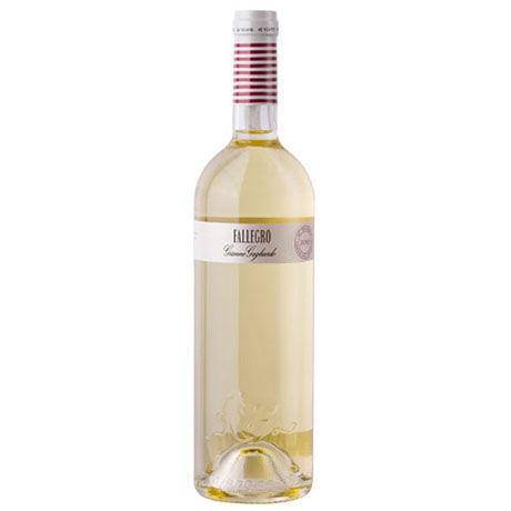レシピ付き!シーフードに合う! 白ワイン6本セット