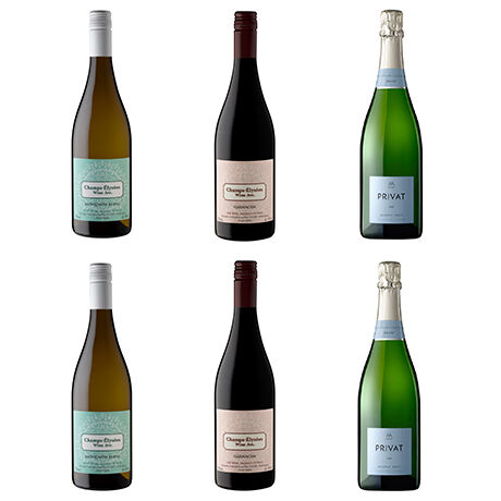 オリジナルワイン(白・赤)&CAVAミックス6本セット