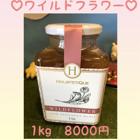 【HOLISTETIQUE Wildflower 1KG】