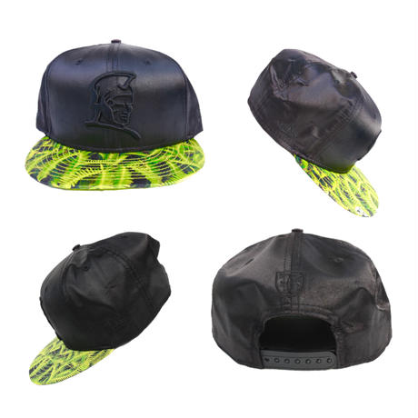 FITTED  HAWAII  Vintage Snapback Cap